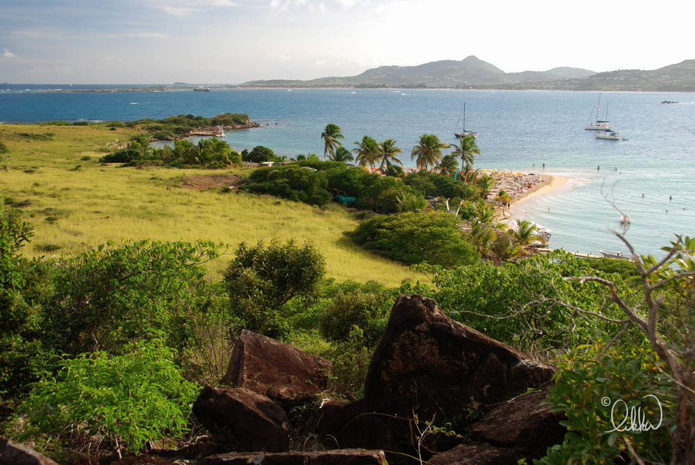 caribbean-likka-8.jpg