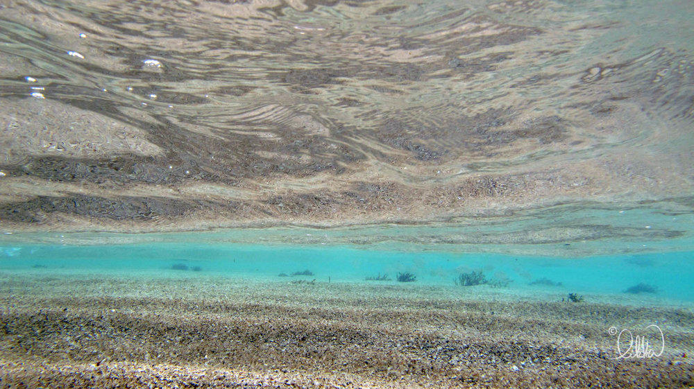 blue-likka-6.jpg
