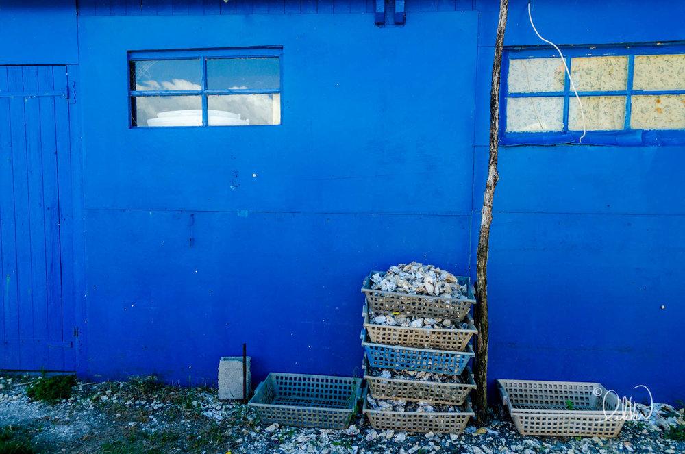 blue-likka-14.jpg