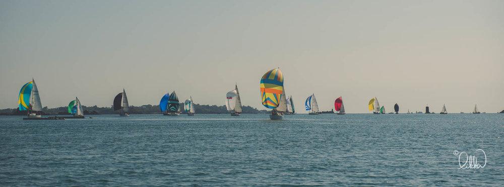 sailing-likka-207.jpg