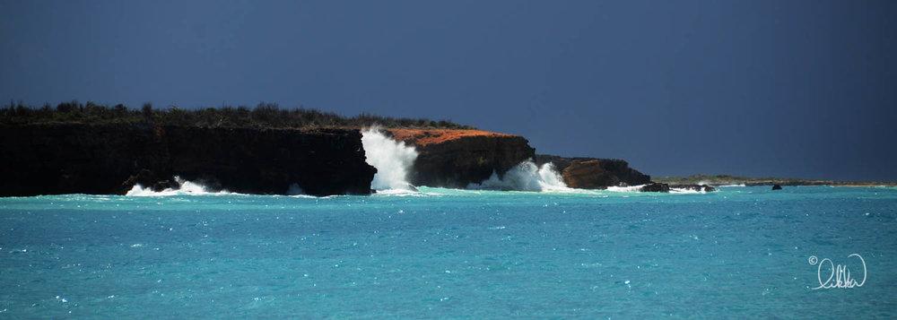 shore-likka-9.jpg
