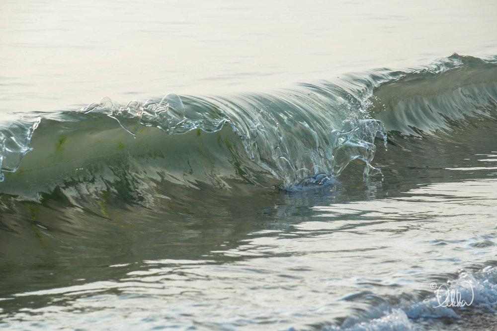 shore-likka-22.jpg