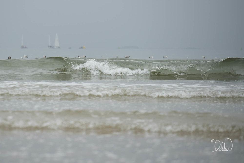 shore-likka-31.jpg