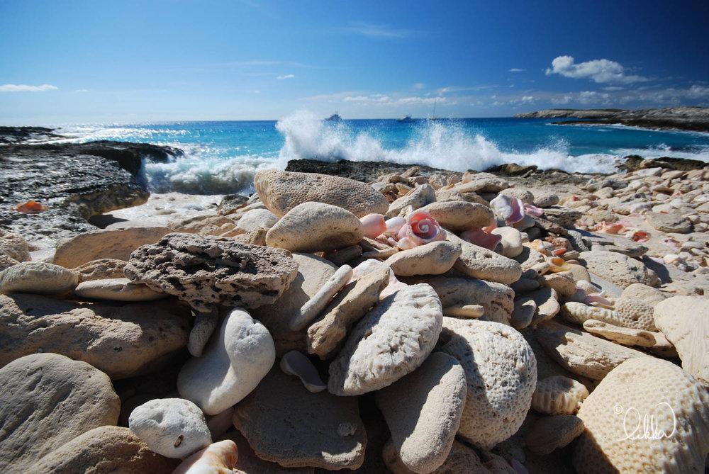 shore-likka.jpg