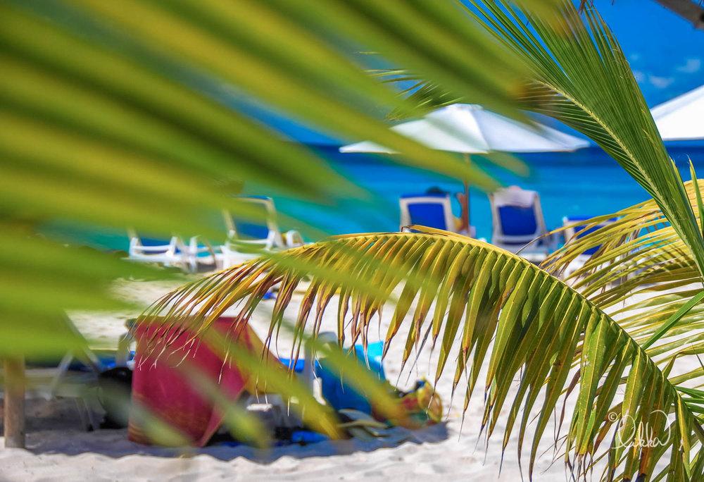 beach-likka-5.jpg