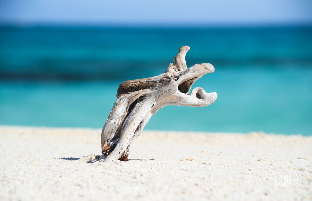 beach-likka-10.jpg