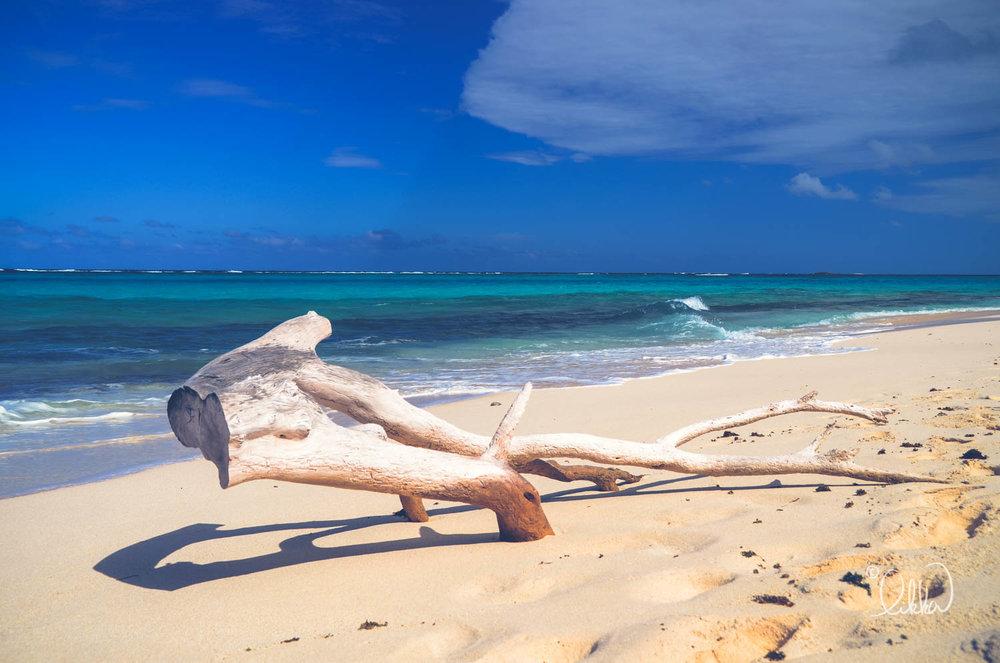 beach-likka-9.jpg