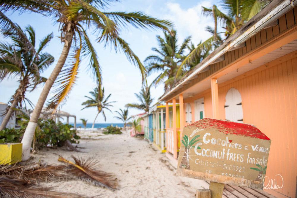 likka-caribbean-319.jpg