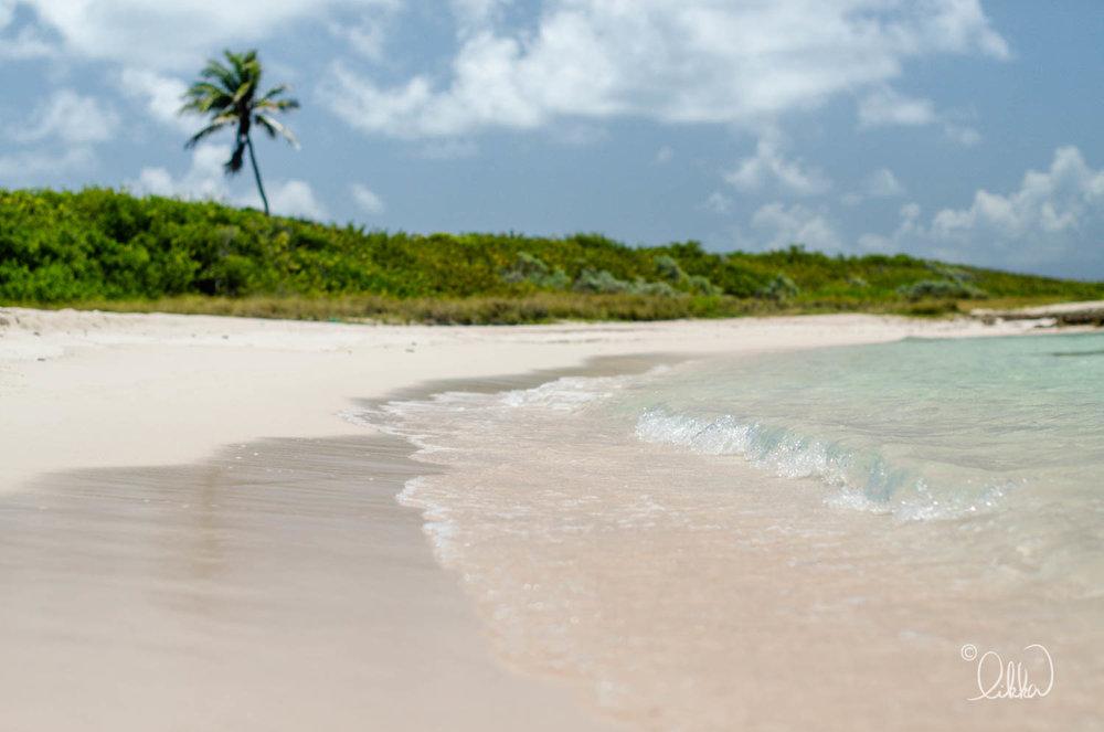 likka-caribbean-247.jpg