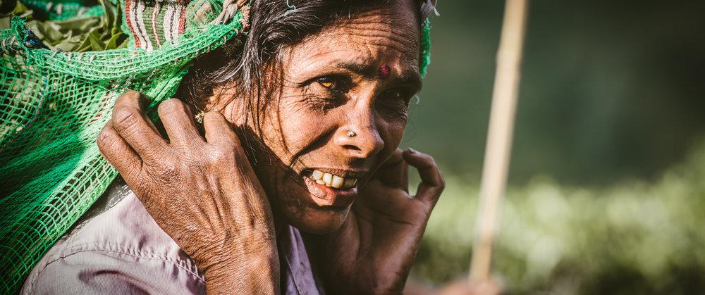 Tea Worker | Sri Lanka | 2015