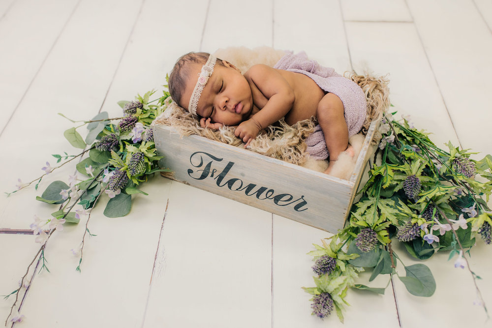 Summer Newborn Session in Waterford Michigan Studio