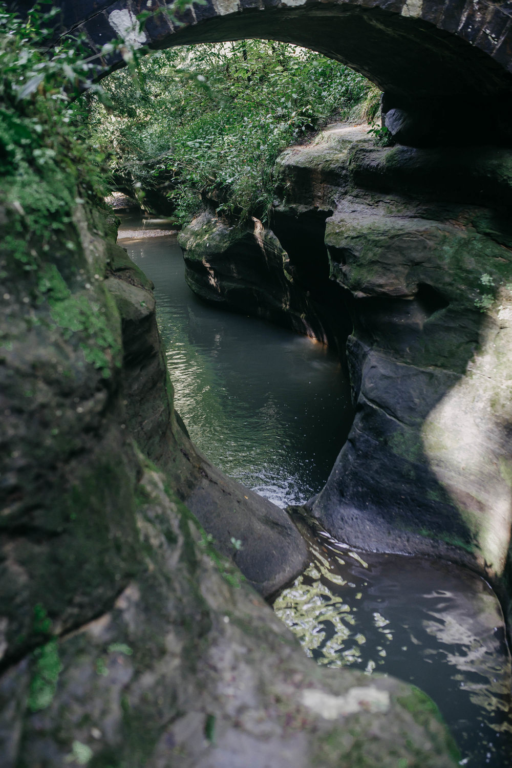Devil's Bathtub Old Man's Trail Hocking Hills State Park Ohio Catchfly Photography
