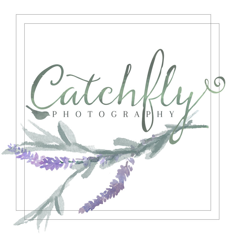 CatchFly Photography