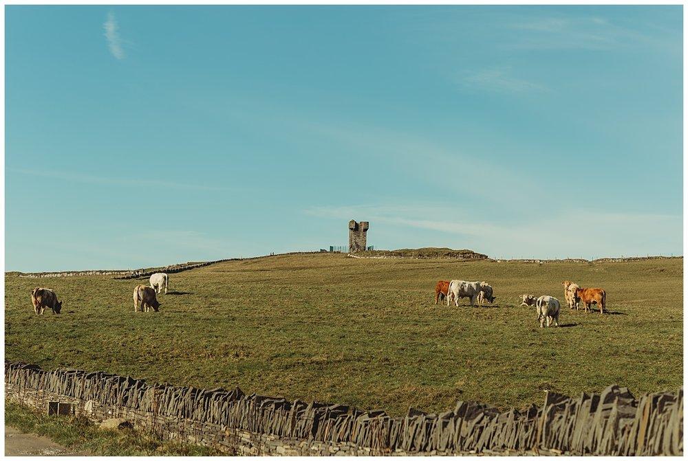 The Cliffs of Moher Destination Wedding Liscannor, County Clare, Ireland_1214.jpg