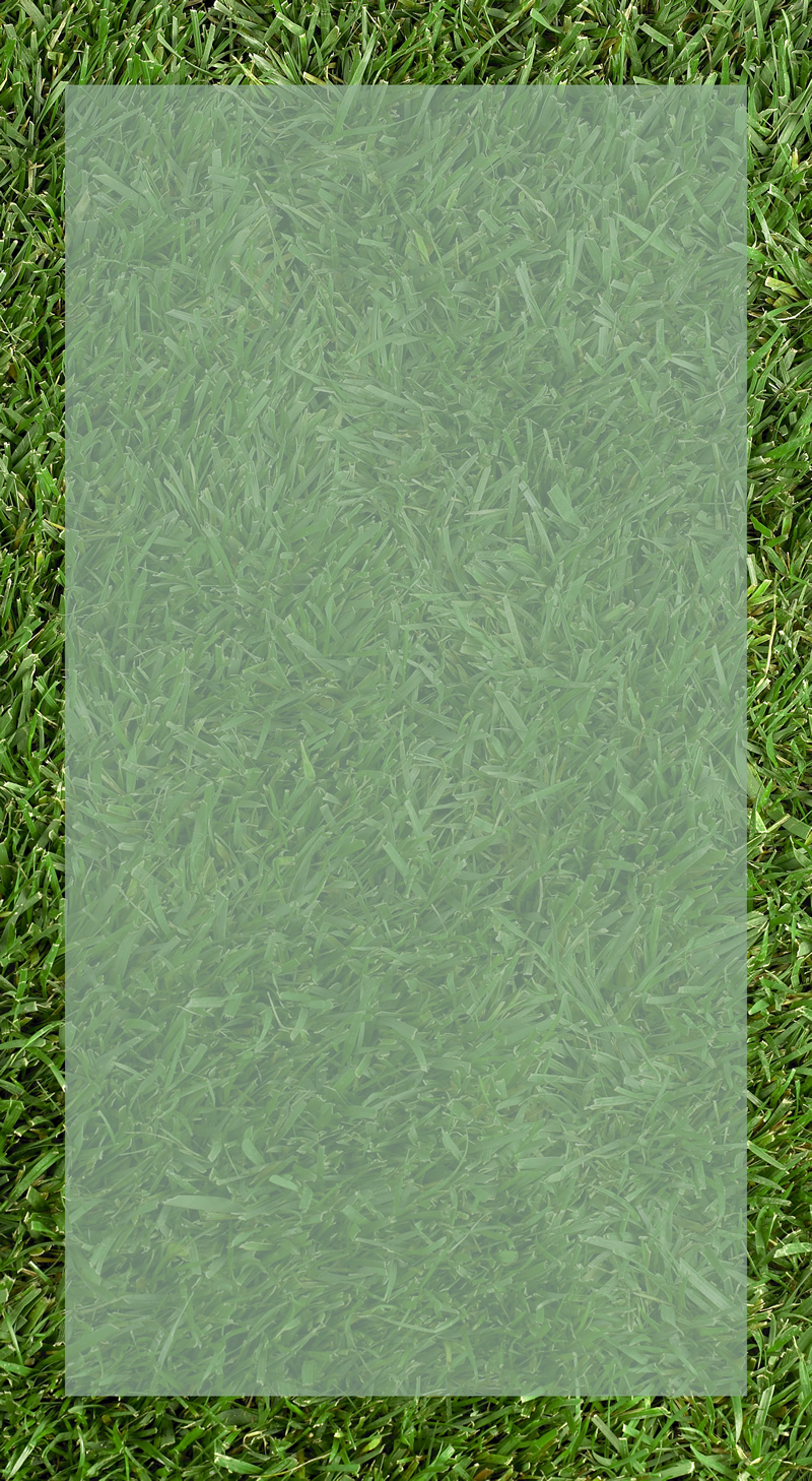 Grass_A_with_inset_800w.jpg