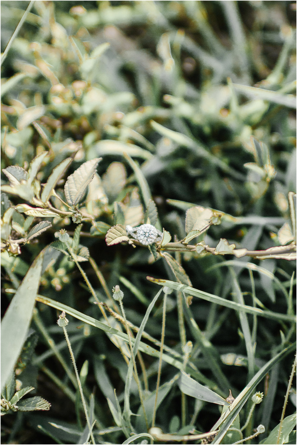 Natural_bridals_Grassy_field-14.jpg