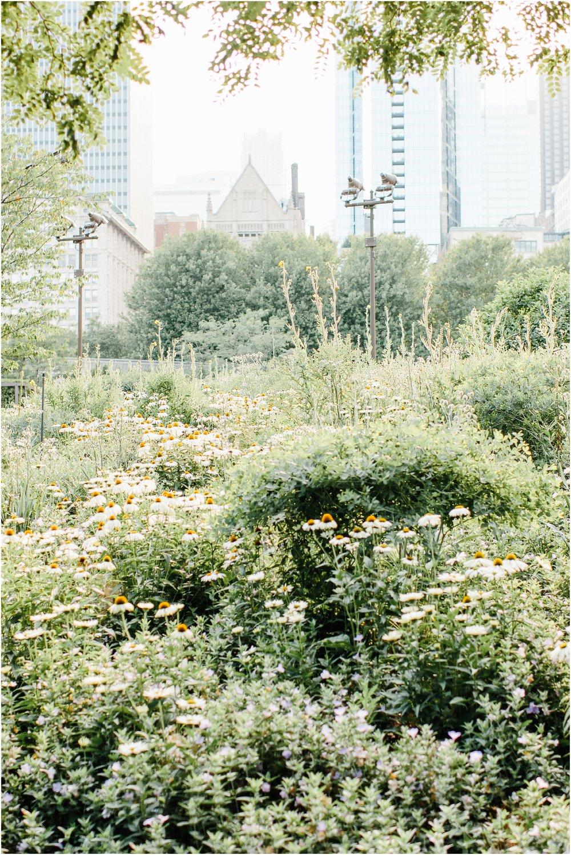 chicago_travel_guide_0509.jpg