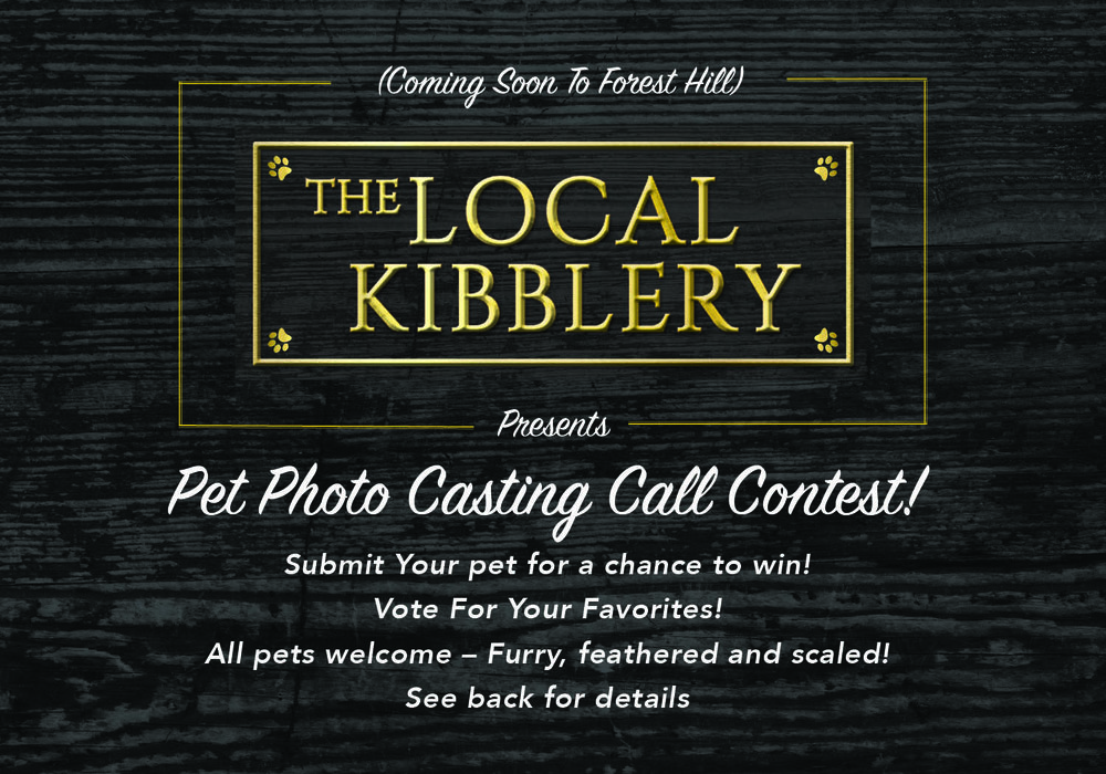 kibble-contest-postcard-coulor.jpg