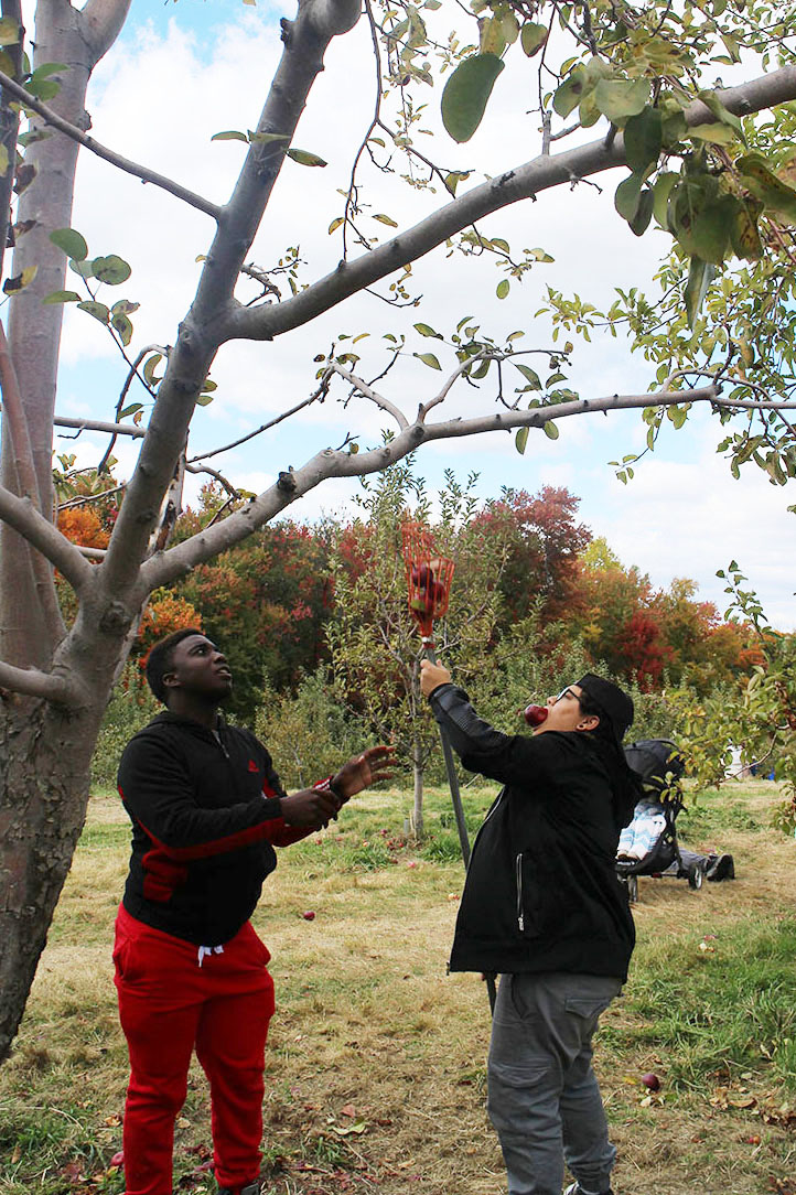 ApplePicking_0076.jpg