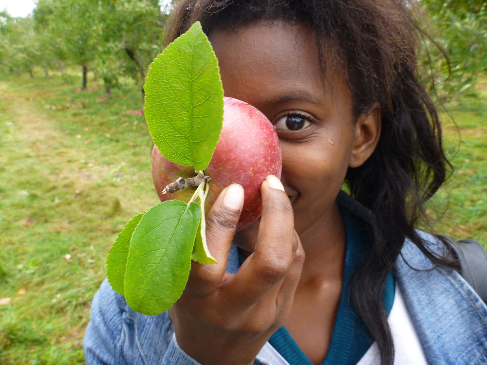 ApplePicking_079.jpg