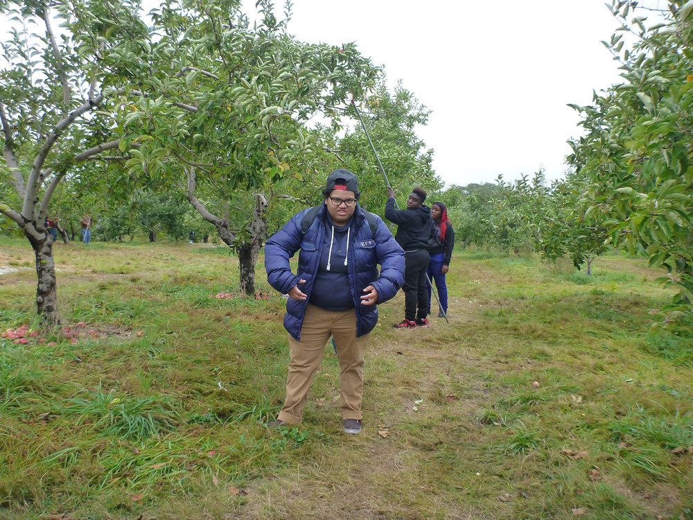 ApplePicking_077.jpg