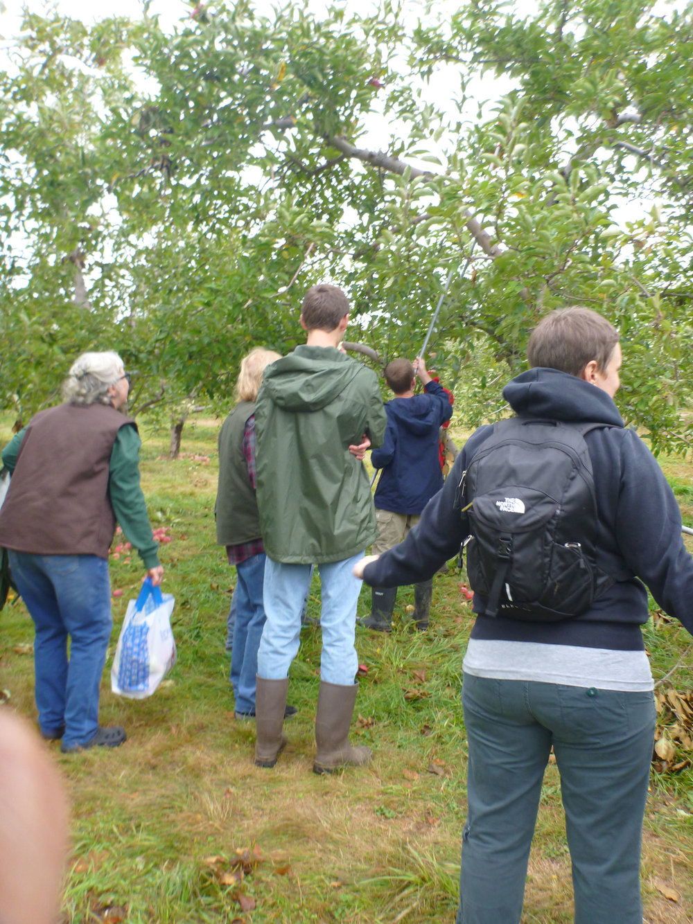 ApplePicking_106.jpg