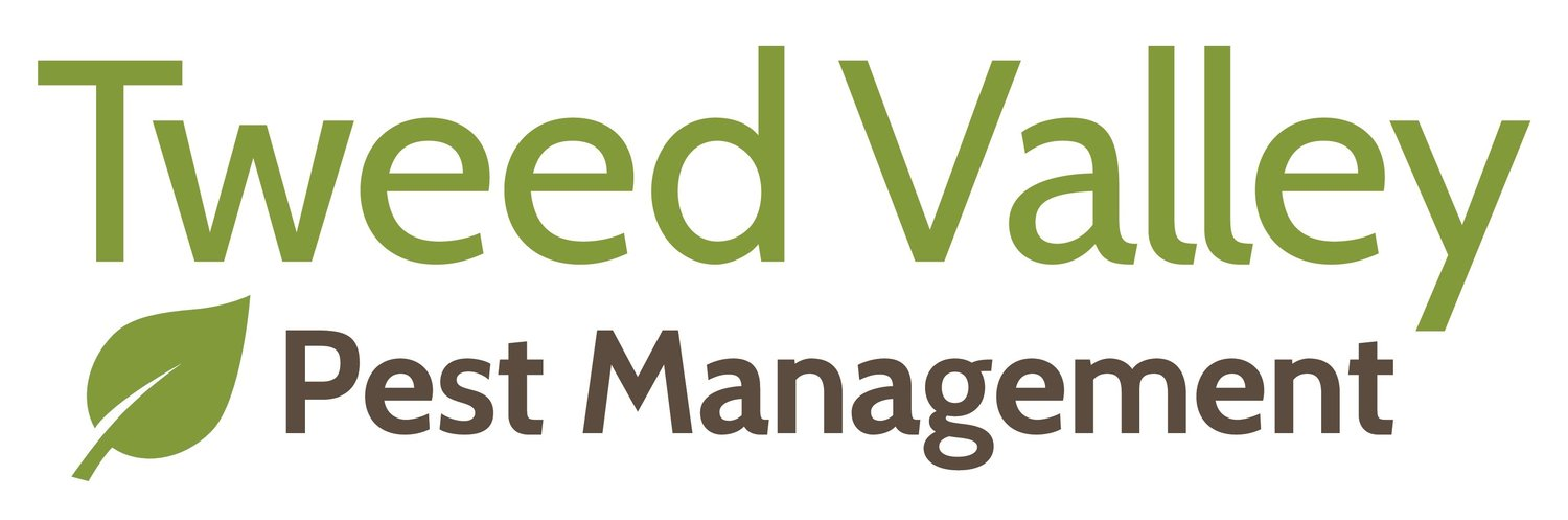 Tweed Valley Pest Management