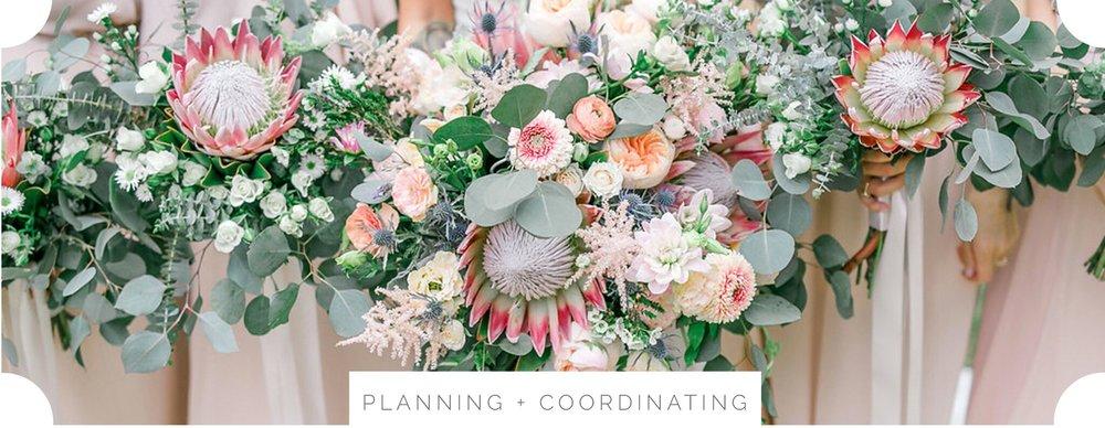 planning and coordinaitn.jpg