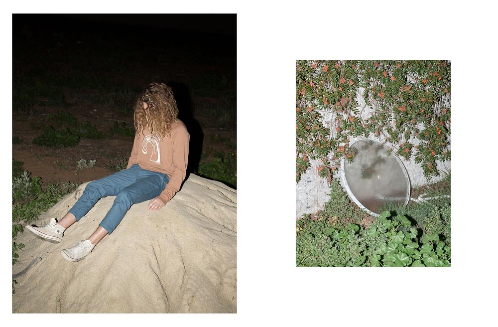 Night Plant_6.jpg