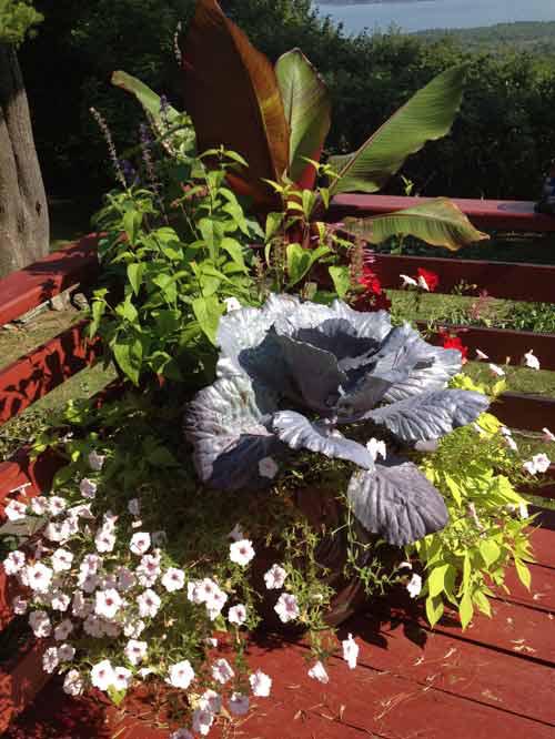 planter-2a.jpg