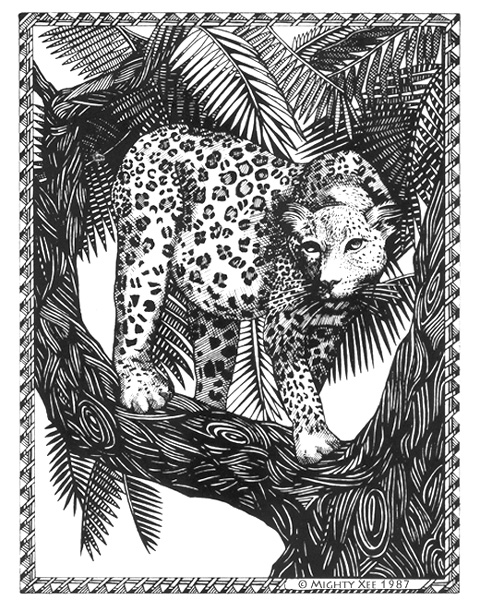 kalahari-cards-mx-leopard.jpg