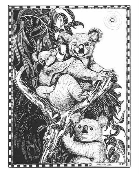 kalahari-cards-mx-koala.jpg