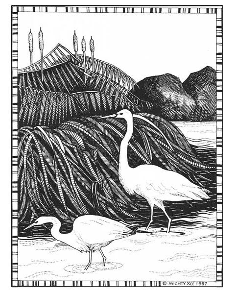 kalahari-cards-mx-cranes.jpg