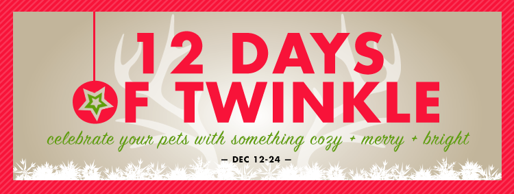 How to TWINKLE?  Gifting a shiny new object + amusement in their eyes + pattering around in excitement = JOY for YOU + THEM Get your pets into the Holiday spirit and celebrate our 10th annual '12 Days of Twinkle' beginning December 12th!  Shop in stores for DAILY DEALS and join us for our Twinkle Mingle HOLIDAY SOCIALS  Our GIFT GUIDE features some of our favorite things for all the fuzzy friends on your list.