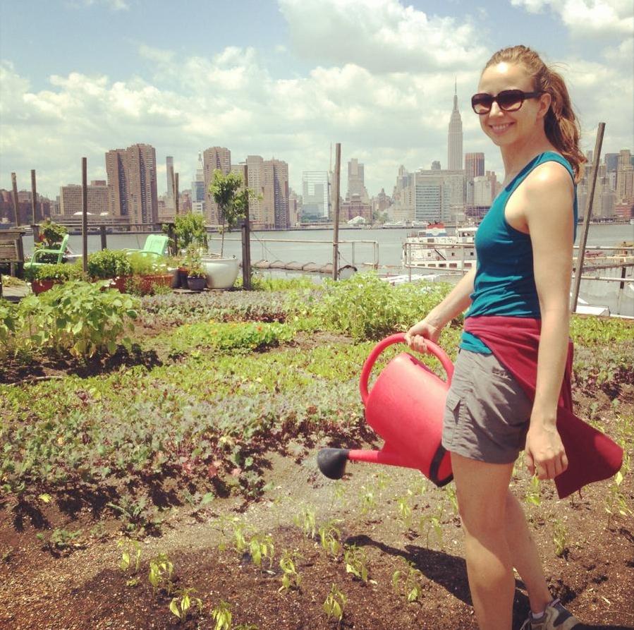 Hannah apprenticing at Eagle Street Rooftop Farm