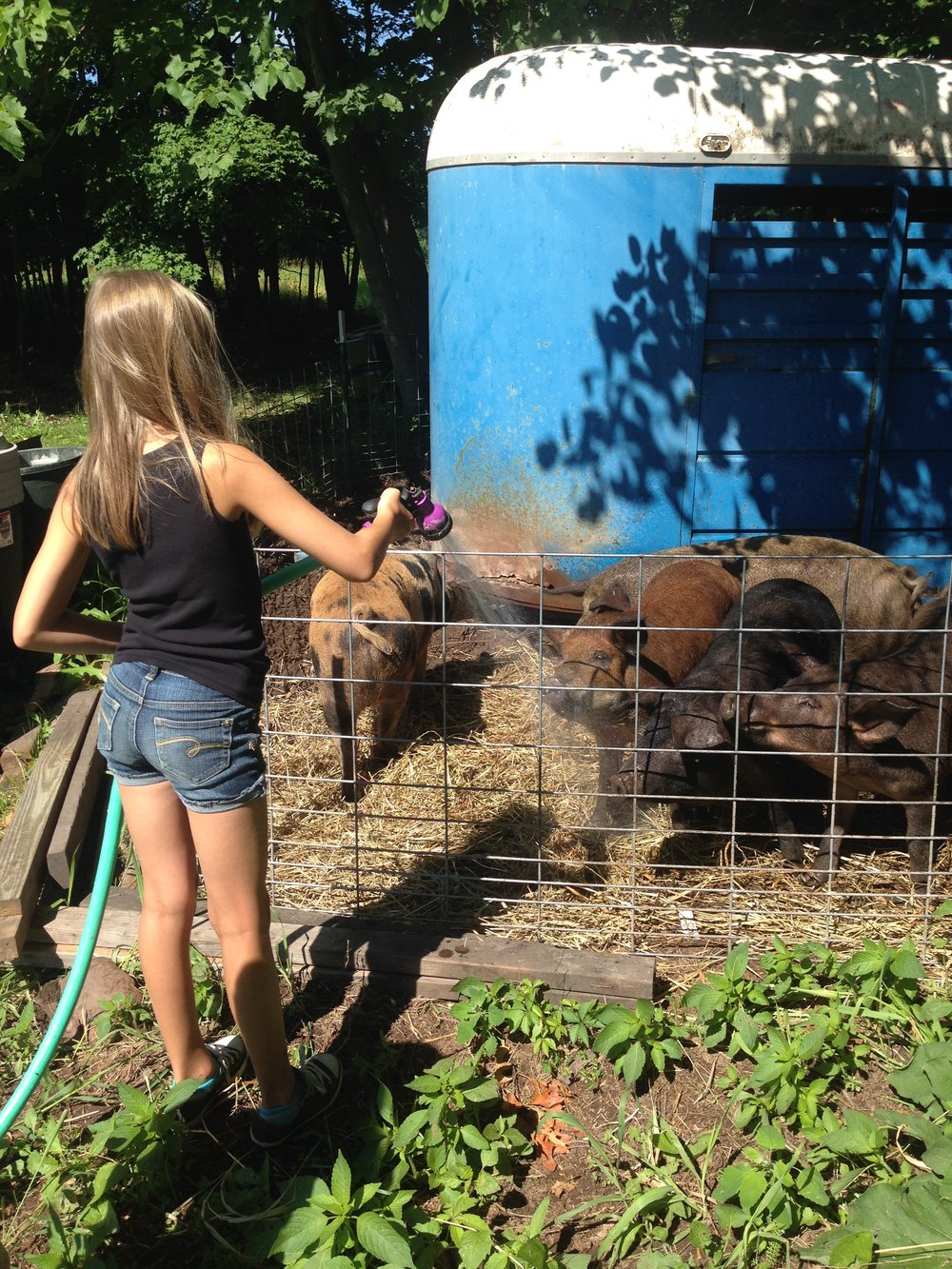 a niece helping out with chores