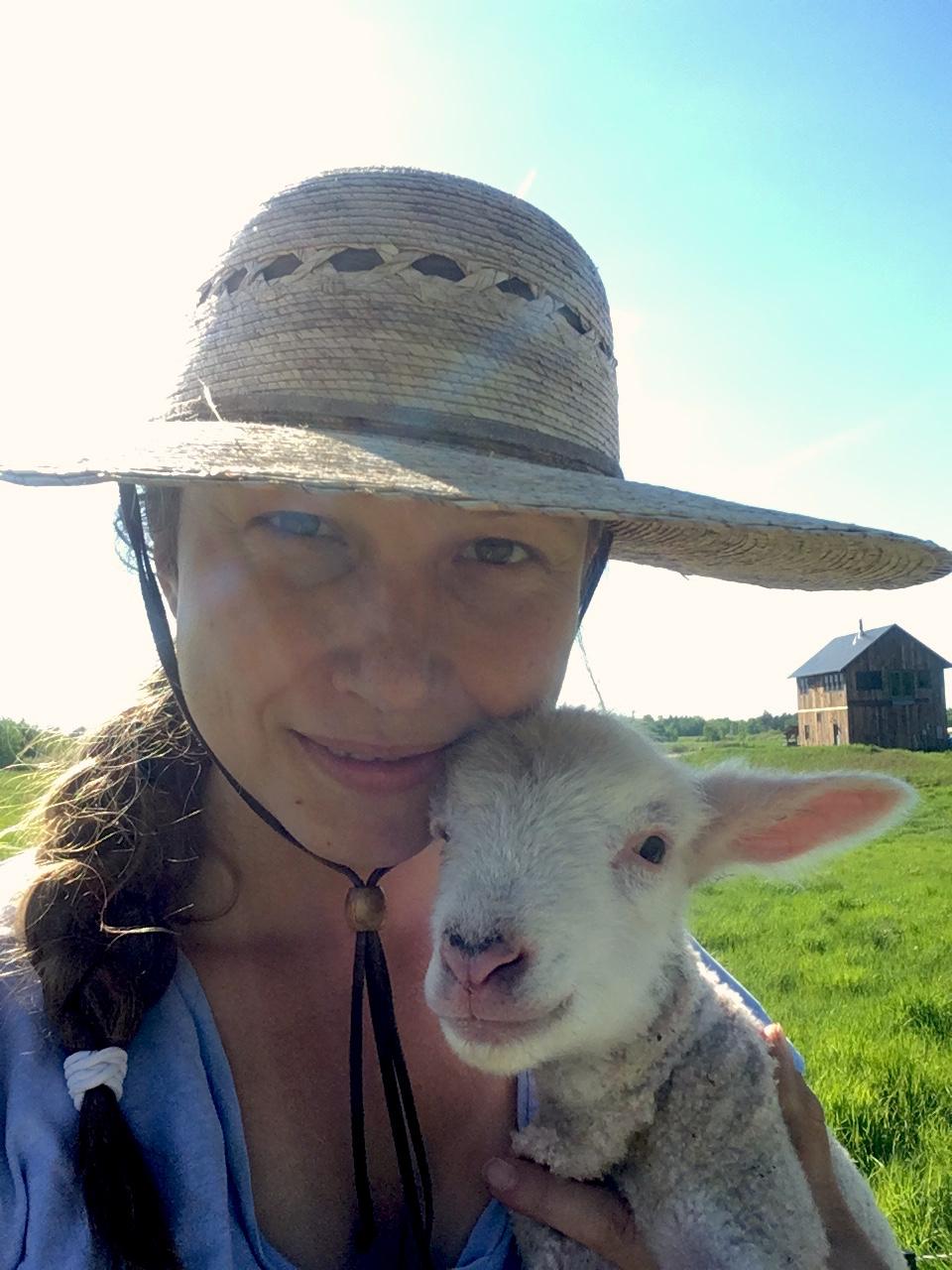 sheep - HB and lamb.JPG