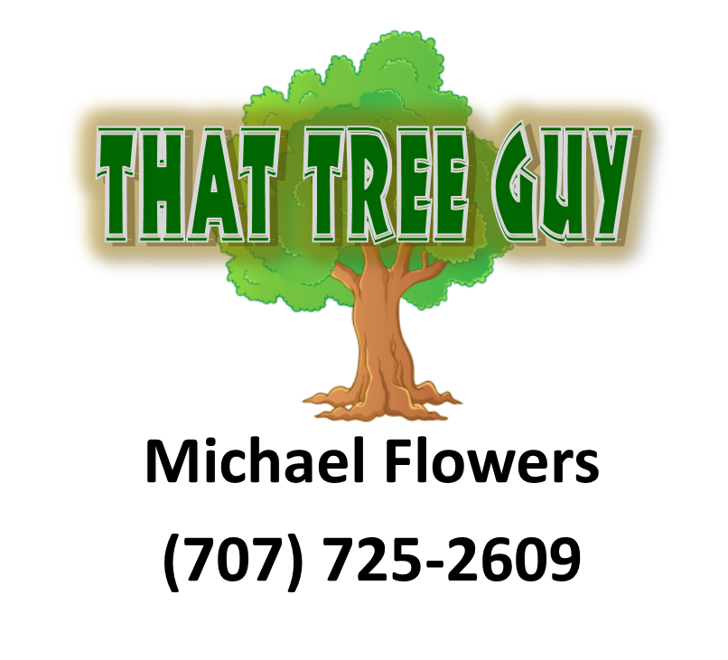 Michael Flower That Tree Guy.png