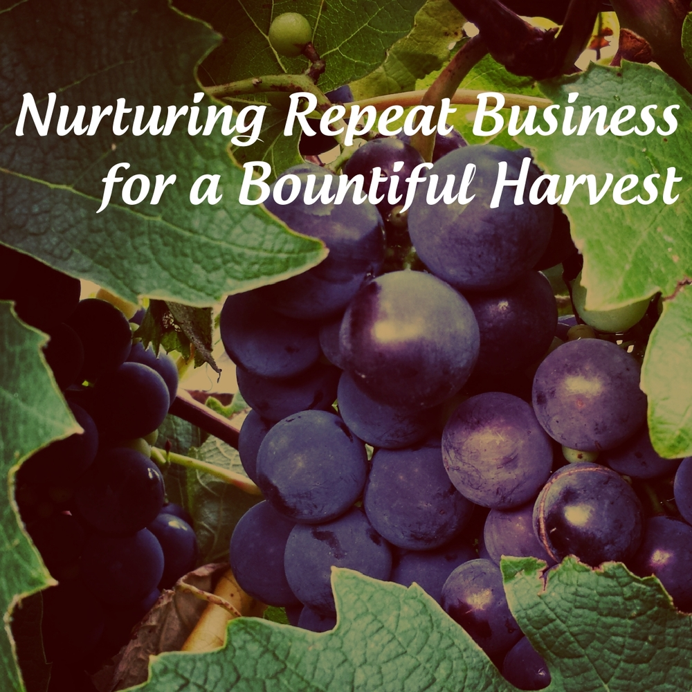 Nurturing Repeat Business for a Bountiful Harvest