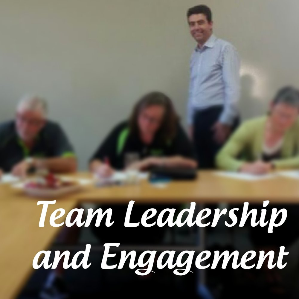 Team Leadership and Engagement