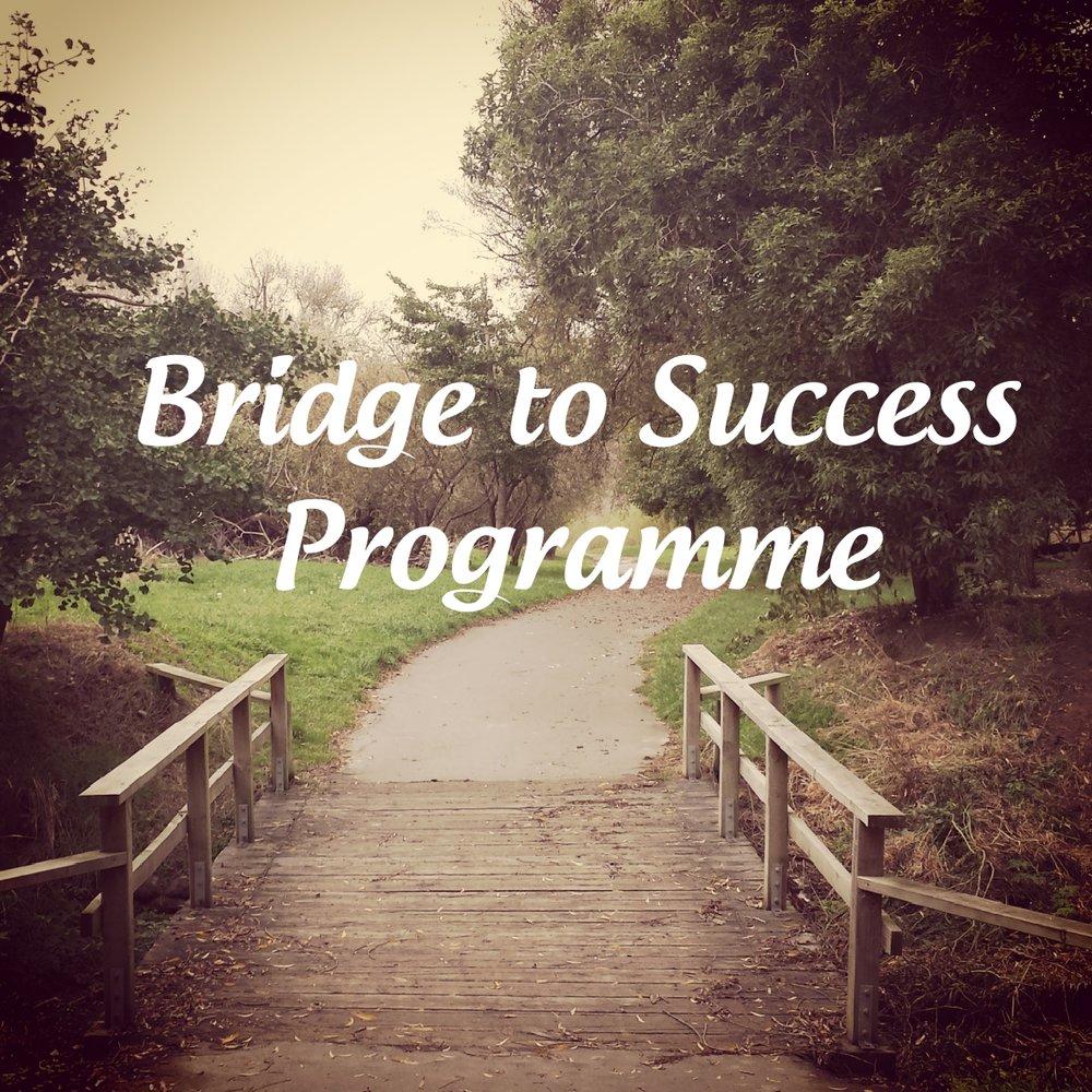 Bridge to Success Programme