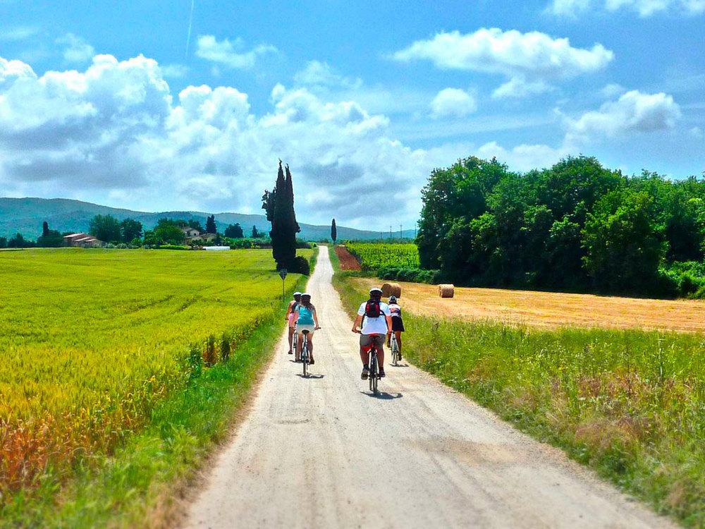 San-Gimignano-to-Siena-by-bike-11-1024x768.jpg
