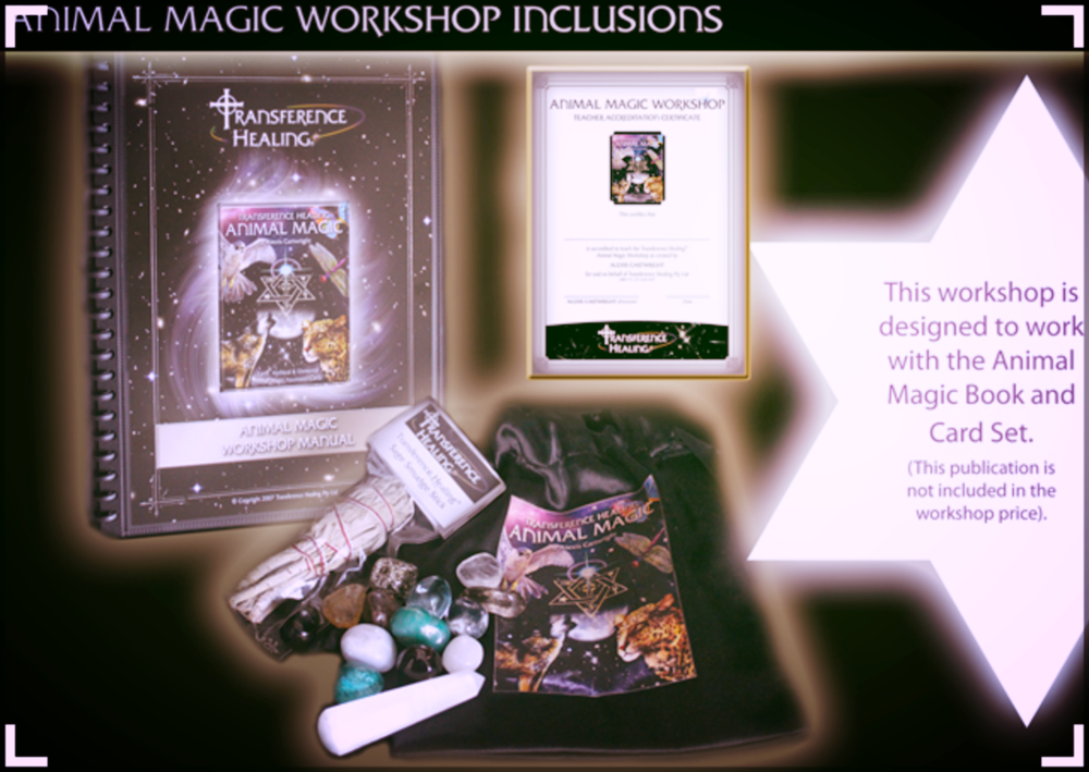 Animal Magic Workshop