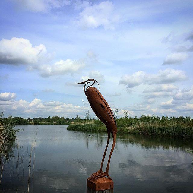 Iron Bird in Dutch Landscape #art #sculpture #bird #holland #thenetherlands #sky