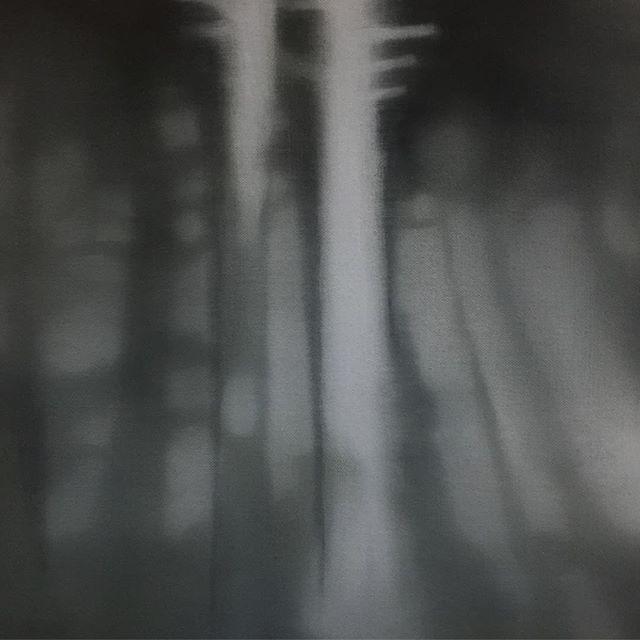 Christiaan Kuitwaard 'Twee Bomen' - 'Two Trees' #art #modernart #painting #christiaankuitwaard