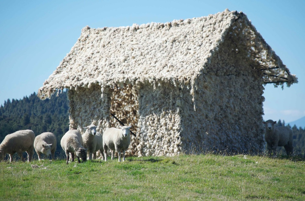 Tika Whare,  house made of bamboo and wool from rams, made while the sheep surrounded me in the paddocks