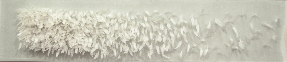 My Mother Killed, duck feathers, hardware cloth, 10x2x1', 2015