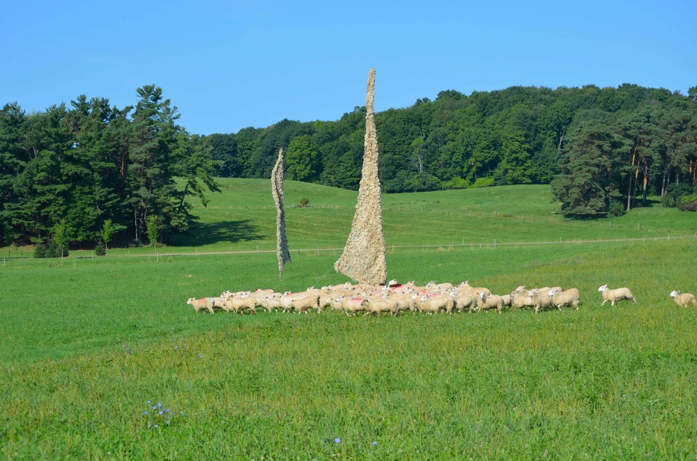 Sheep Sail, part of the  Windscape  installation. Here a shepherdess, sheep dog, and sheep maneuver through twenty-five, 10-40 foot tall woven meadow sails at Shelburne Farms.