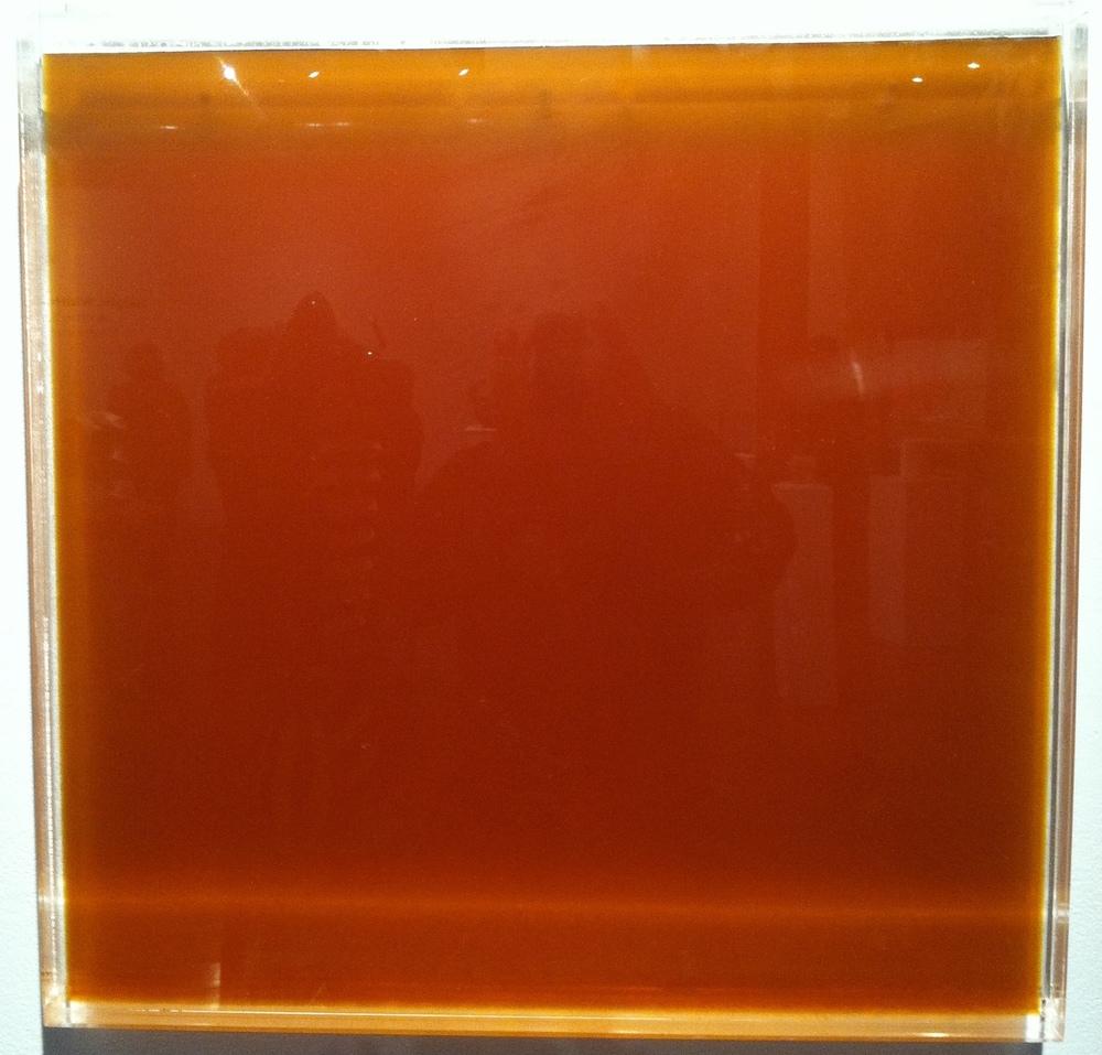 honey wall_012.jpg
