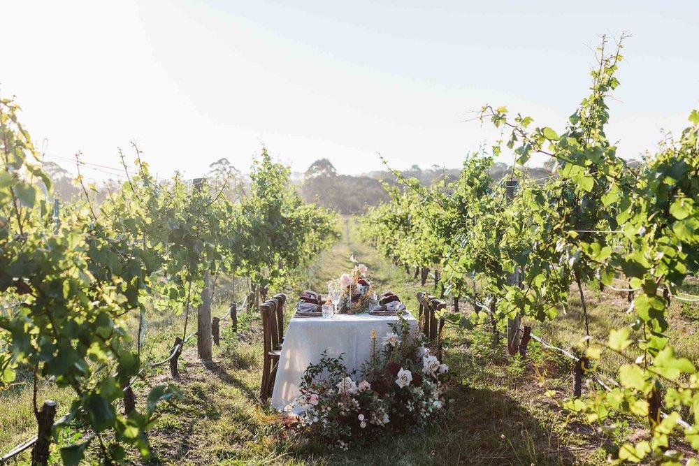 Kas-Richards-Wedding-Ediorial-Photographer-Mornington-Peninsula-Winery-Wedding-Karen-Willis-Holmes-Gown-Pop-up-with-Style-Planners-18.jpg